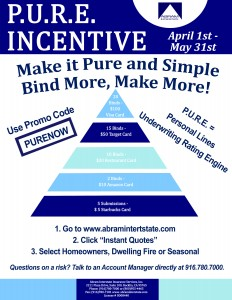 PURE INCENTIVE BLUE - Pyramid