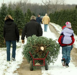 Christmas-Tree-Lot-Family