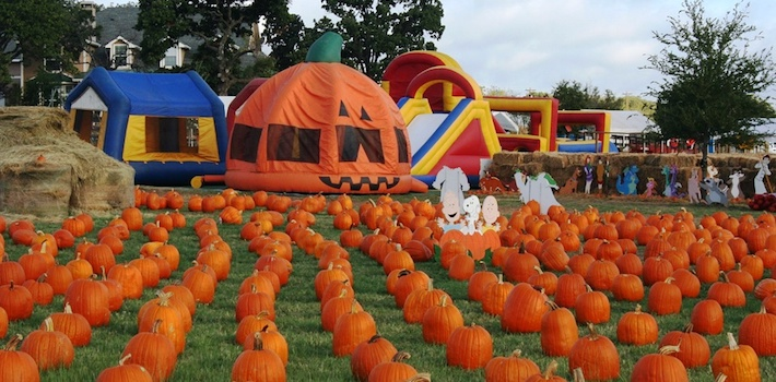 wholesale pumpkin patch insurance special events CA CMGA Abram